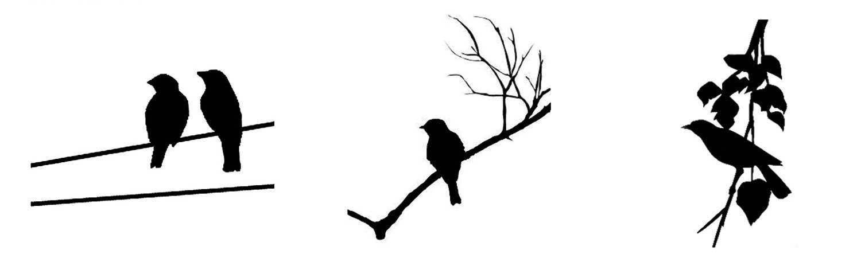 Birds Black Enamel Decal Assortment