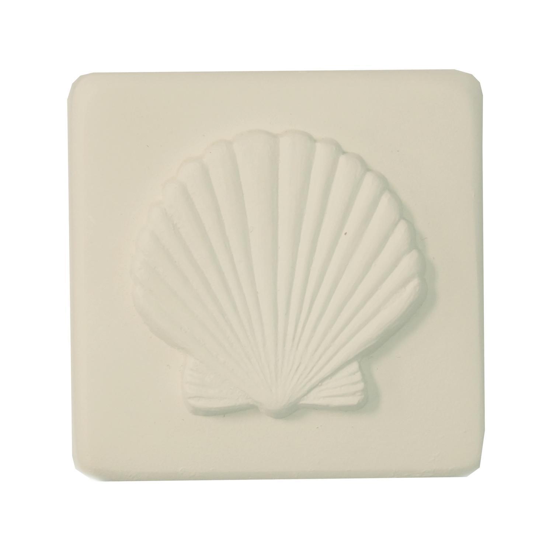 Delphi Studio Shell Impression Tile