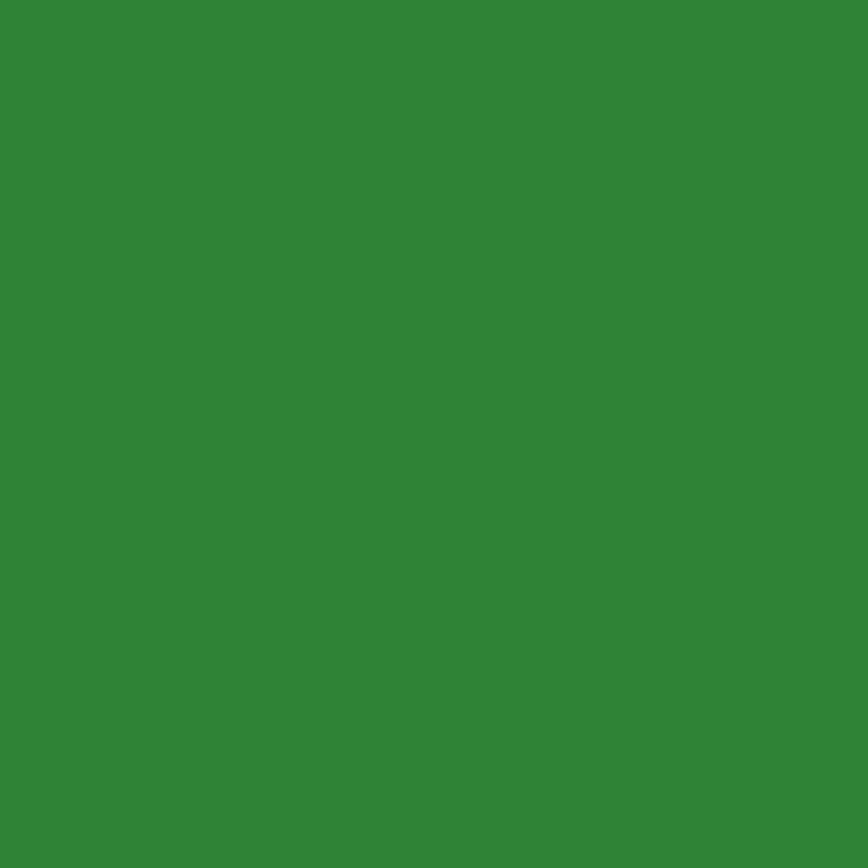10 x 16 Bullseye Ginkgo Green Transparent Striker Double Rolled - 90 COE