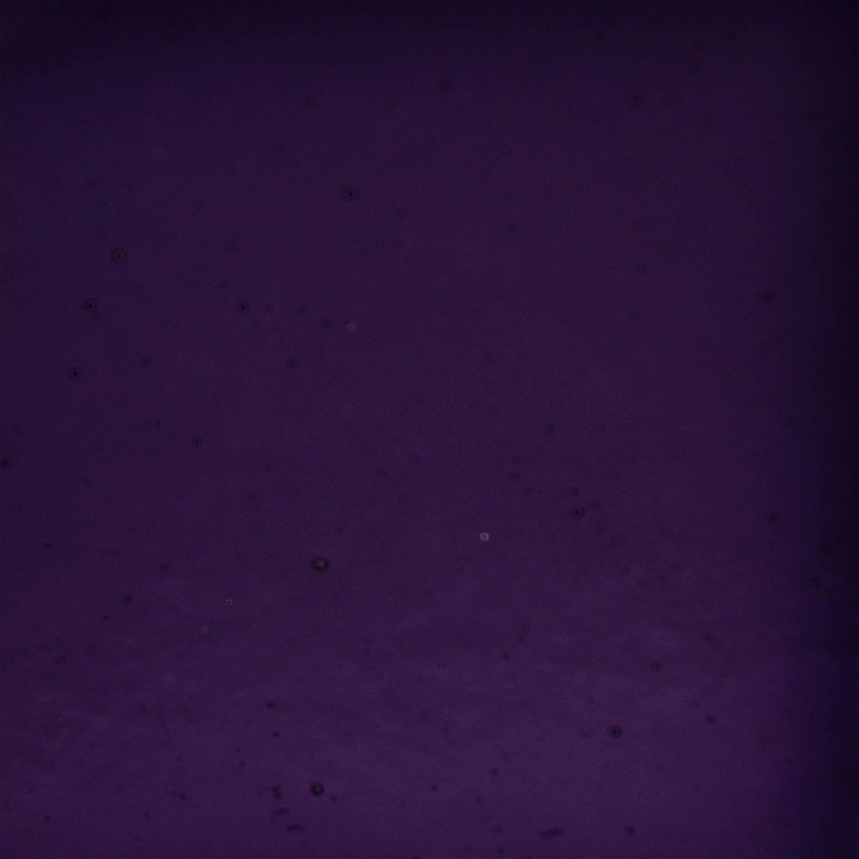 Y-96 Violet Transparent - 96 COE