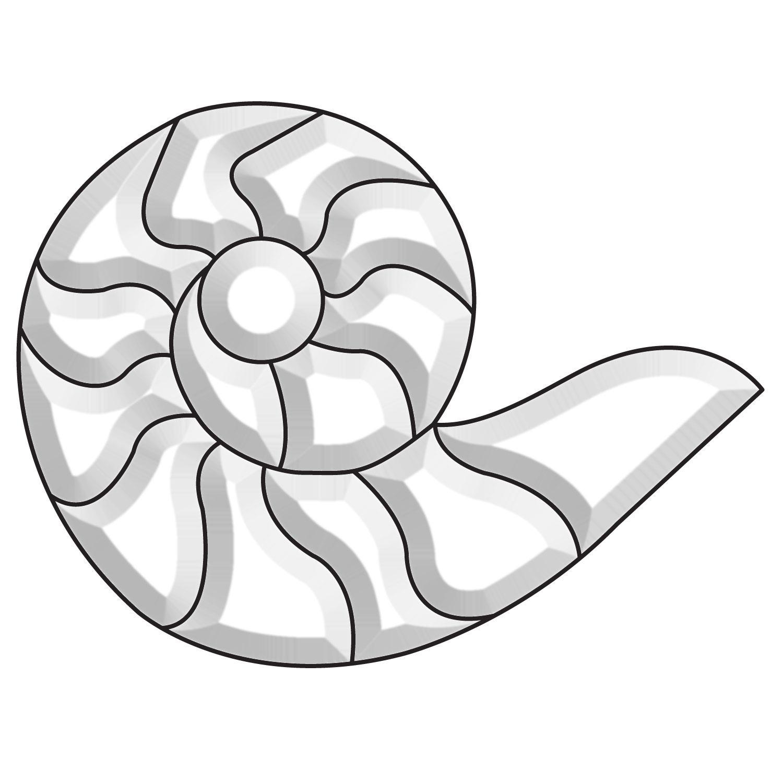 Snail Bevel Cluster