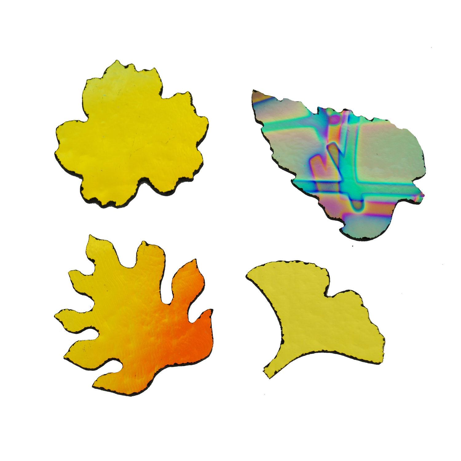 CBS Small Tropical Leaves Assortment 4 Pack - 90 COE