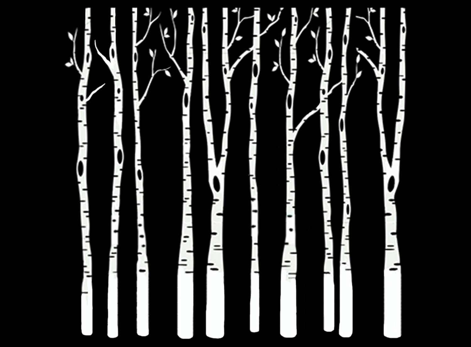 Birch Trees White Enamel Decal