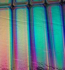 4 x 4 1 1/2 Tropical Rays on Thin Black - 90 COE