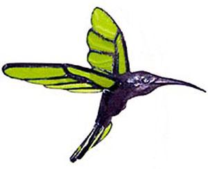 Hummingbird Body