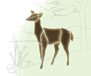 Large Brown Deer Bevel Cluster