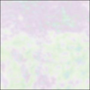 Spectrum Solid White Iridized