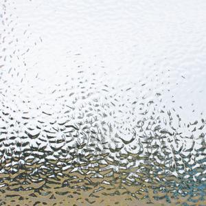 16 x 20 English Muffle Clear