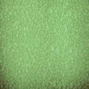 16 x 20 English Muffle Sage Green