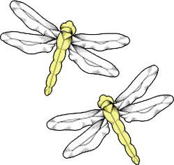 Pair of Yellow Damselflies Bevel Clusters