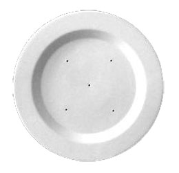 11 Round Rimmed Plate