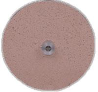 5 Polishing Disc