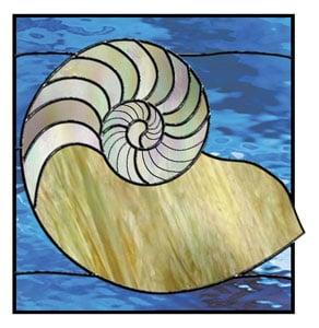 Free Nautilus Shell Pattern